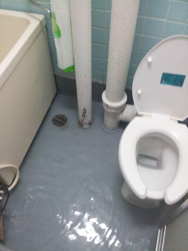 Das mit dem abfluss im badezimmer pottwalblog - Badezimmer abfluss ...