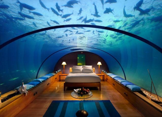 Unterwasser Schlafen Pottwalblog