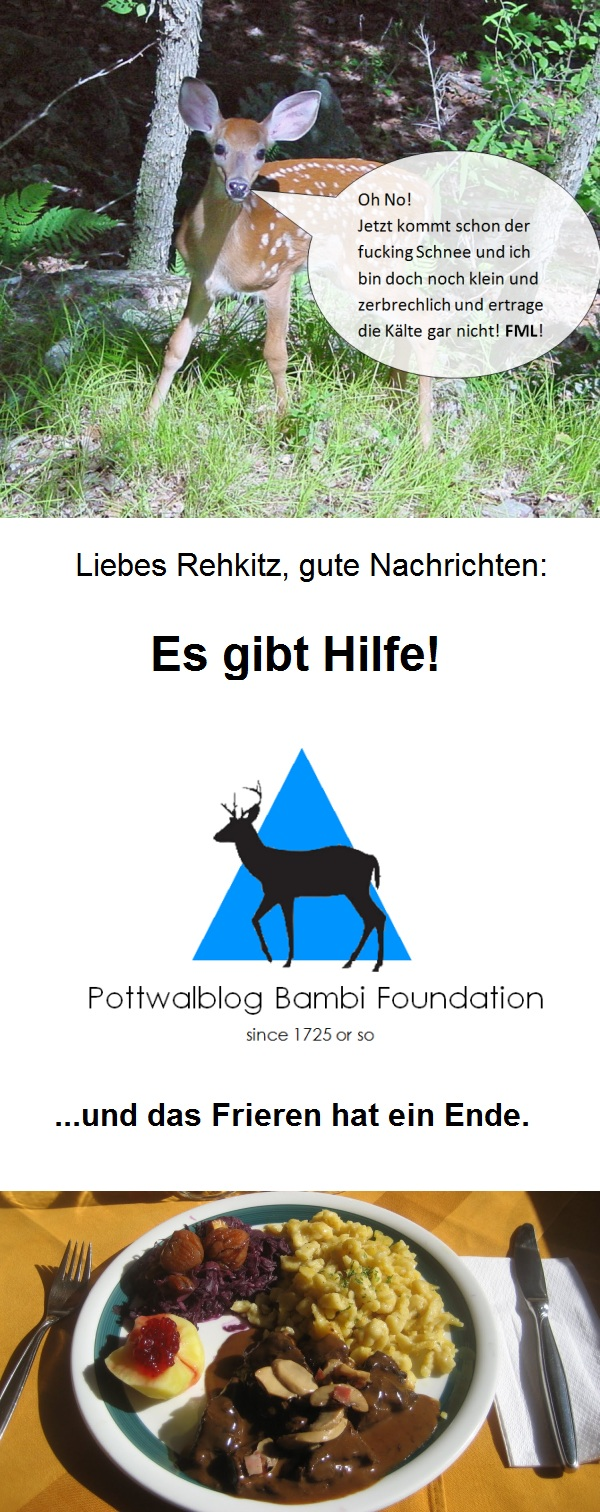 Pottwalblog Bambi Foundation